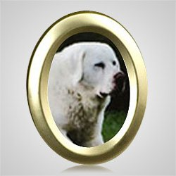 Large Oval Gold Pet Picture Frame
