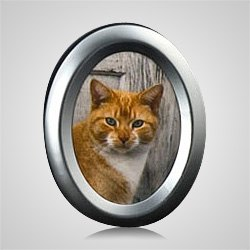 Large Oval Silver Pet Picture Frame