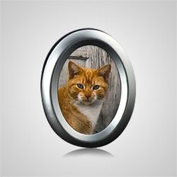 Small Oval Silver Pet Picture Frame