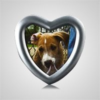 Heart Silver Pet Picture Frame