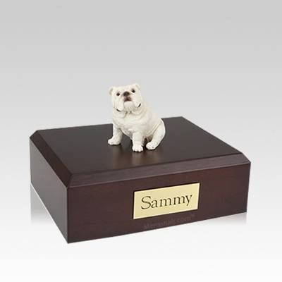 Bulldog White Sitting Medium Dog Urn