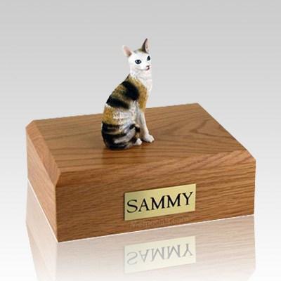 Cornish Rex Tort Large Cat Cremation Urn