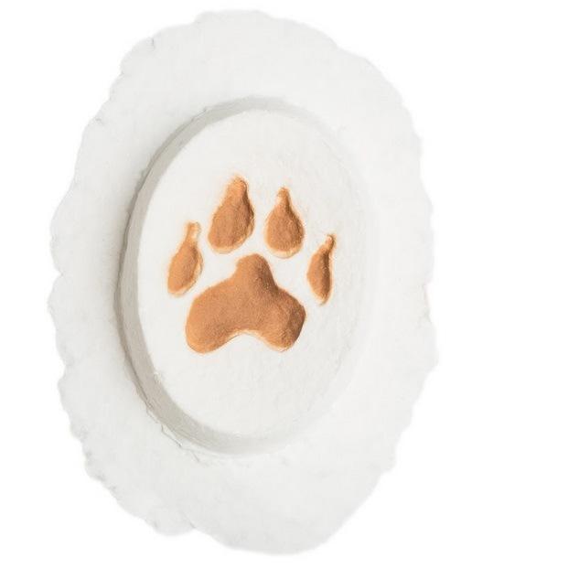 Dog Paw Biodegradable Pet Urn