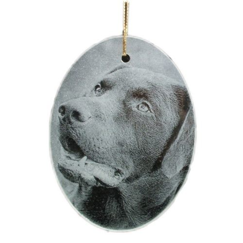 Glass Photo Pet Keepsake Ornament