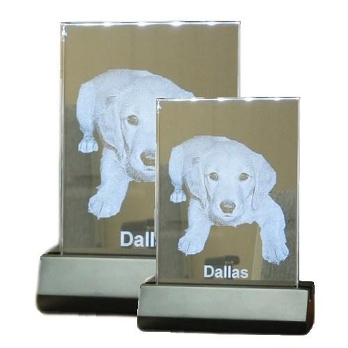 Illuminated Glass Pet Photos