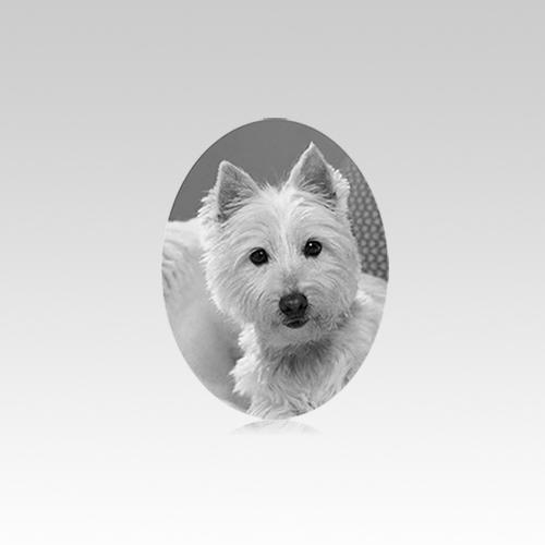 Pet Headstone Pictures Vertical VI