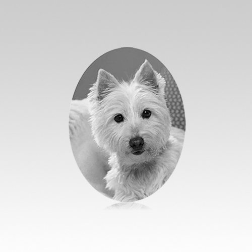 Pet Headstone Pictures Vertical V