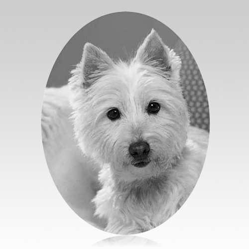 Pet Headstone Pictures Vertical