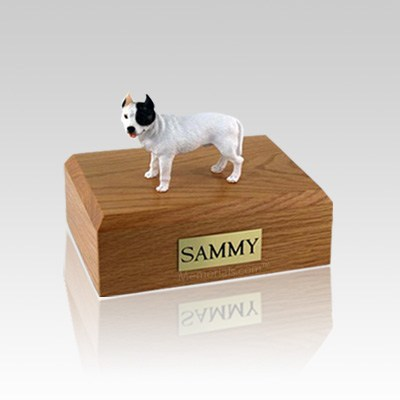 Pit Bull Terrier White Medium Dog Urn