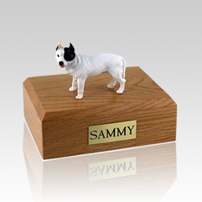 Pit Bull Terrier White X Large Dog Urn