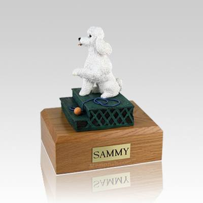 Poodle White Sport Cut Sitting Large Dog Urn