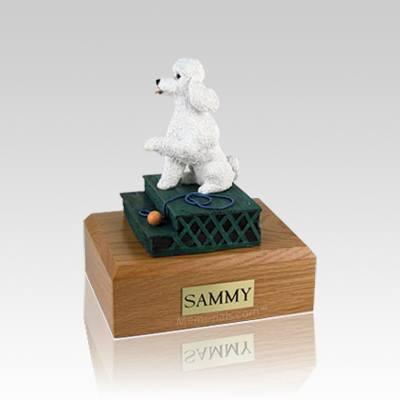 Poodle White Sport Cut Sitting Medium Dog Urn