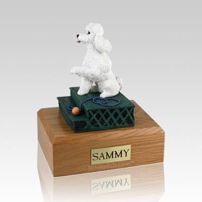 Poodle White Sport Cut Sitting X Large Dog Urn