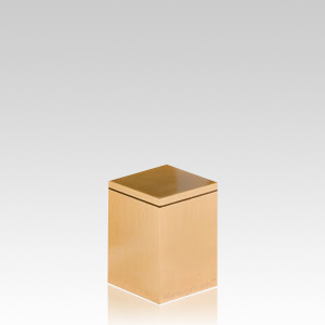 Solitary Pet Small Urn