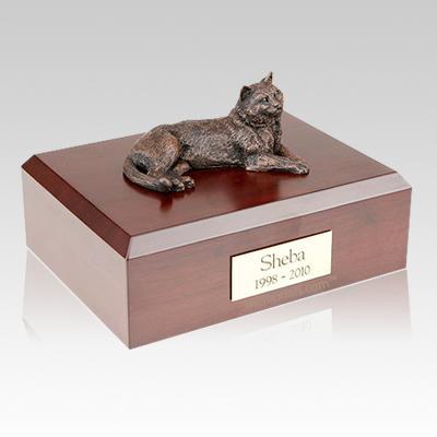 Tabby Bronze Cat Cremation Urns