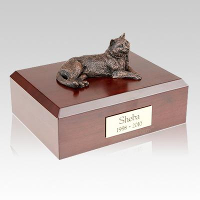 Tabby X Large Bronze Cat Cremation Urn