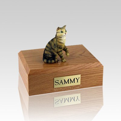 Tabby Brown Sitting Small Cat Cremation Urn