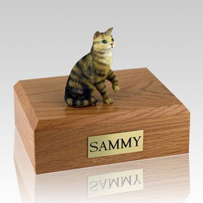 Tabby Brown Sitting X Large Cat Cremation Urn