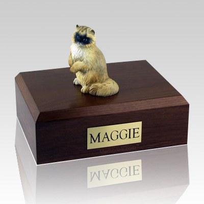 Ragdoll Cat Cremation Urns