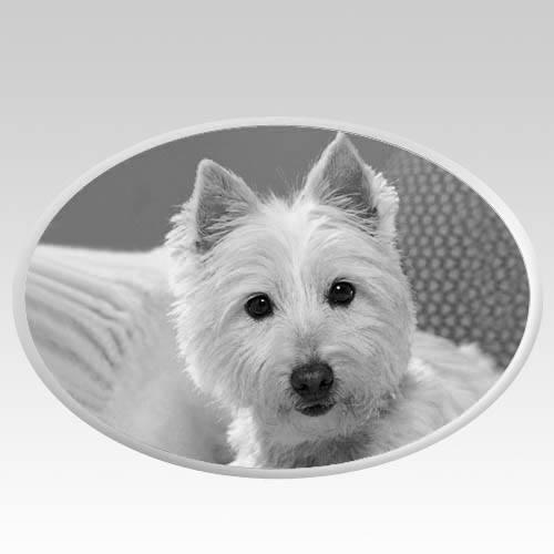 Pet Headstone Pictures Horizontal