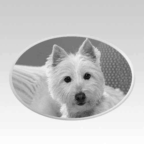 Pet Headstone Pictures Horizontal II