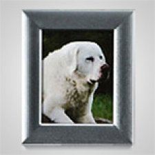 Large Rectangle Silver Pet Picture Frame