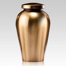 Spartan Medium Bronze Cremation Urn
