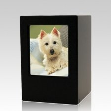 Black Pet Medium Photo Wood Urn