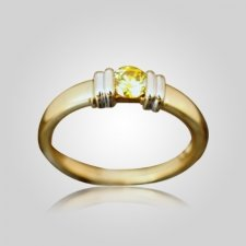 Two Tone Bar Ring