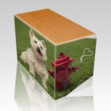 Fire Hydrant Oak Pet Picture Urn II