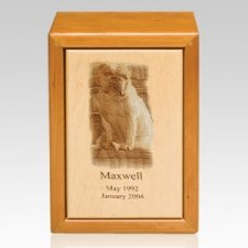 Ultimate Pet Picture Cremation Urn