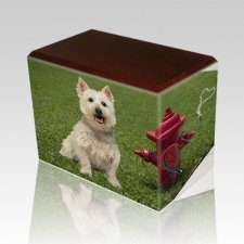 Fire Hydrant Walnut Pet Picture Urn