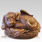 Angel Dog Cremation Urn Bronze