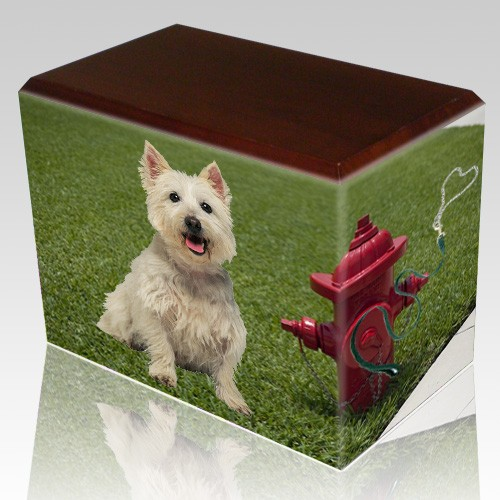 Fire Hydrant Walnut Pet Picture Urn III