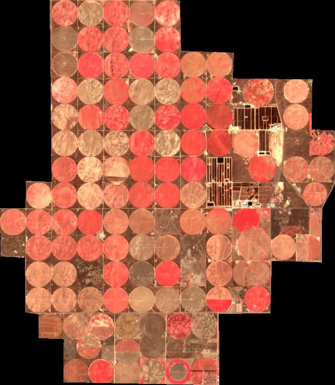 Sample image 7458e58b