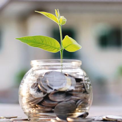 Sua startup precisa de mais investimento? Saiba como conseguir – por Cássio Spina