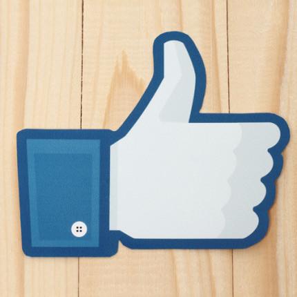 Não deixe que o Facebook gerencie seu orçamento- por Camila Porto