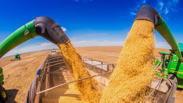 Entenda como o agronegócio é ambiente de inovação