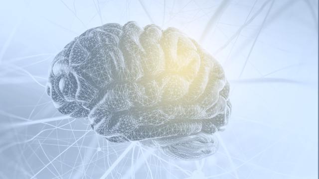 Como desenvolver seu pensamento crítico?