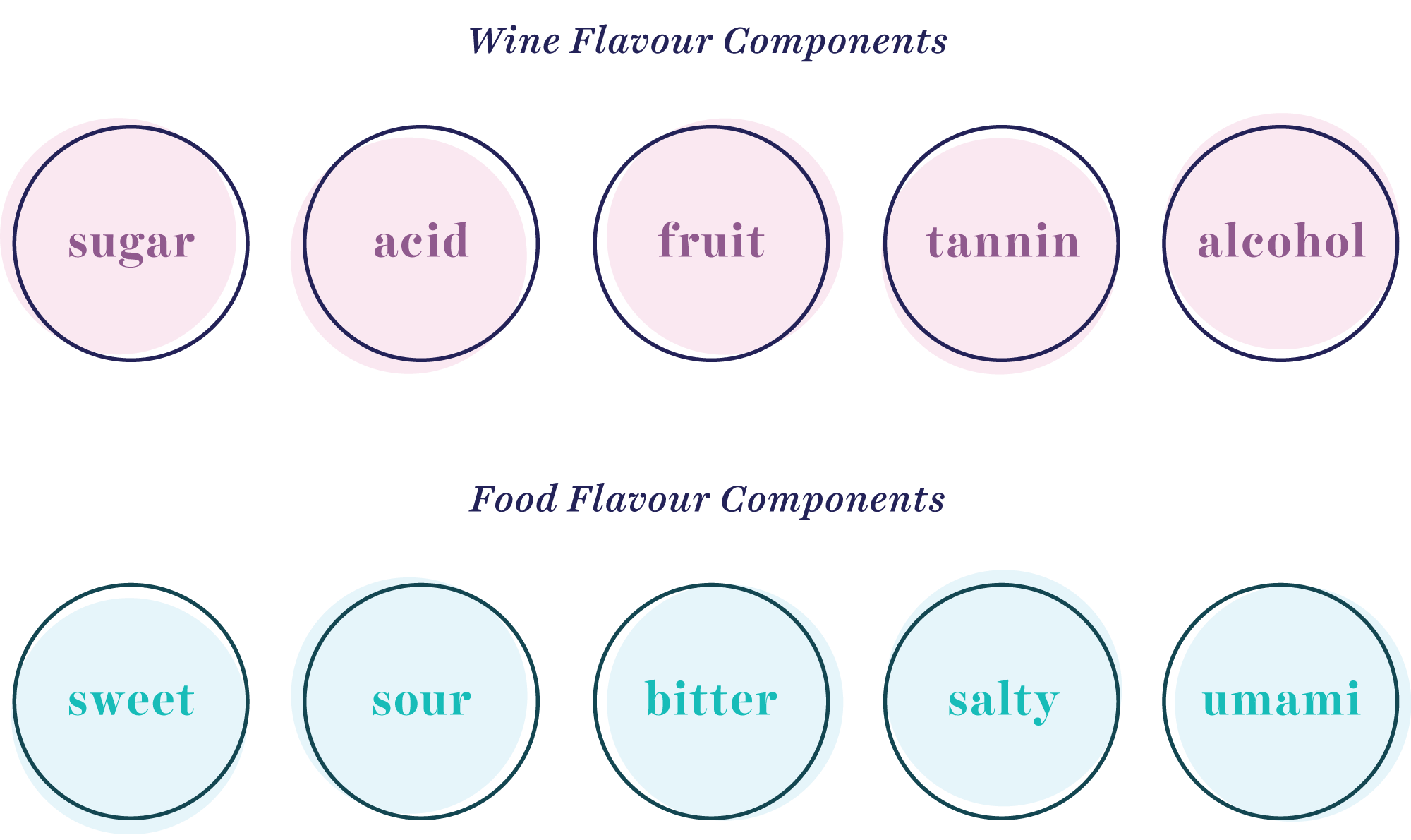 wine and food flavour components graphic