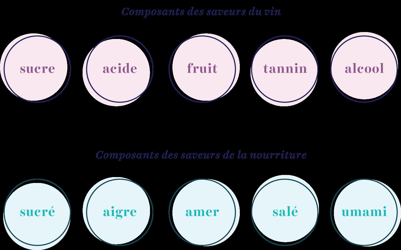 graphique de composants de saveur de vin et de nourriture