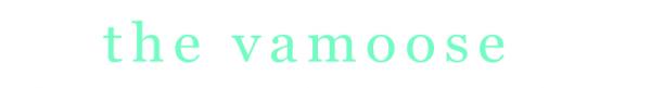 The Vamoose Logo
