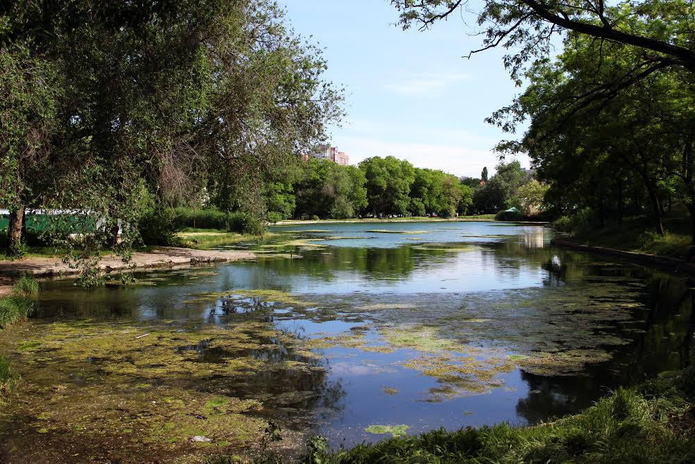 Дюковский сад Слободка в Одессе