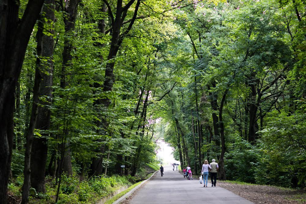 Парк на Сыхове
