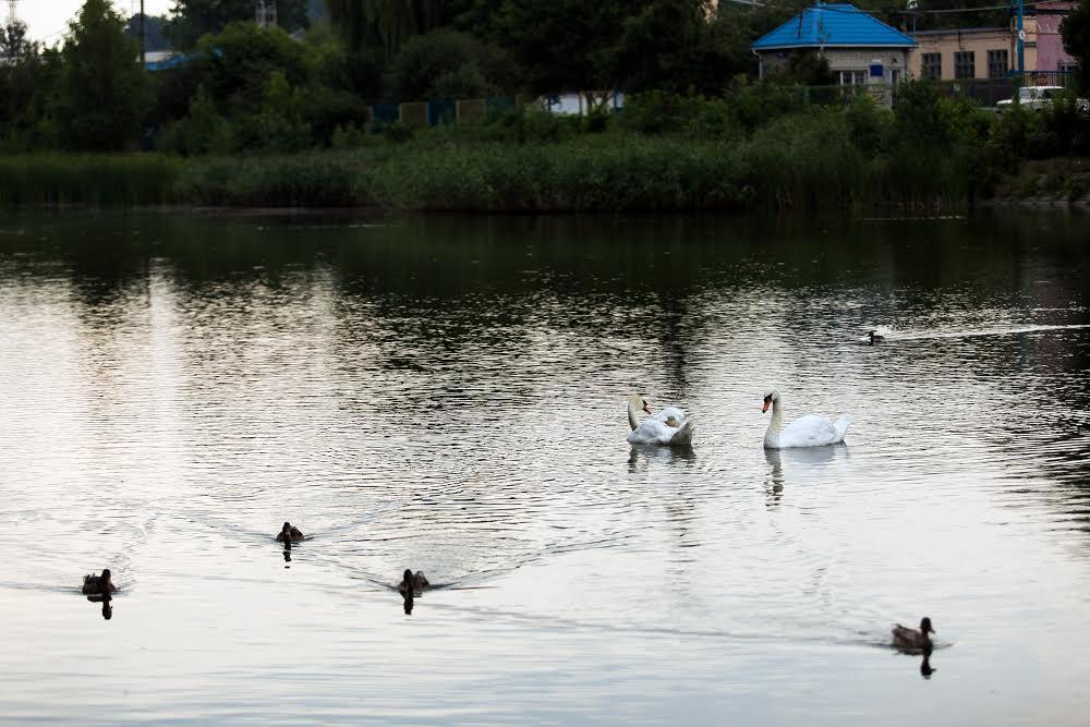 Озеро Левандовка