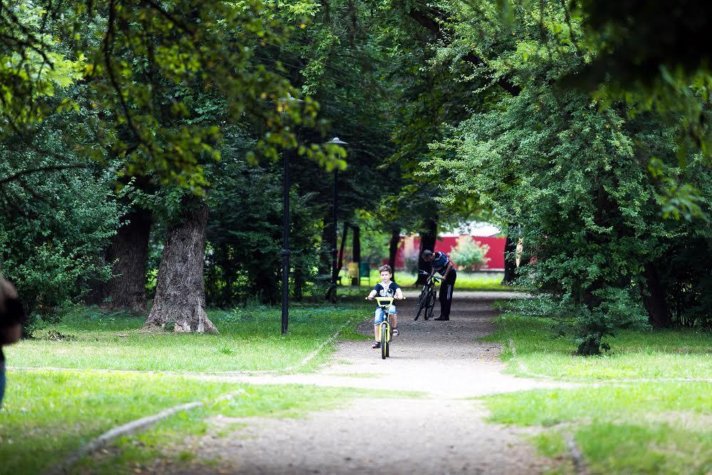 Левандовский парк
