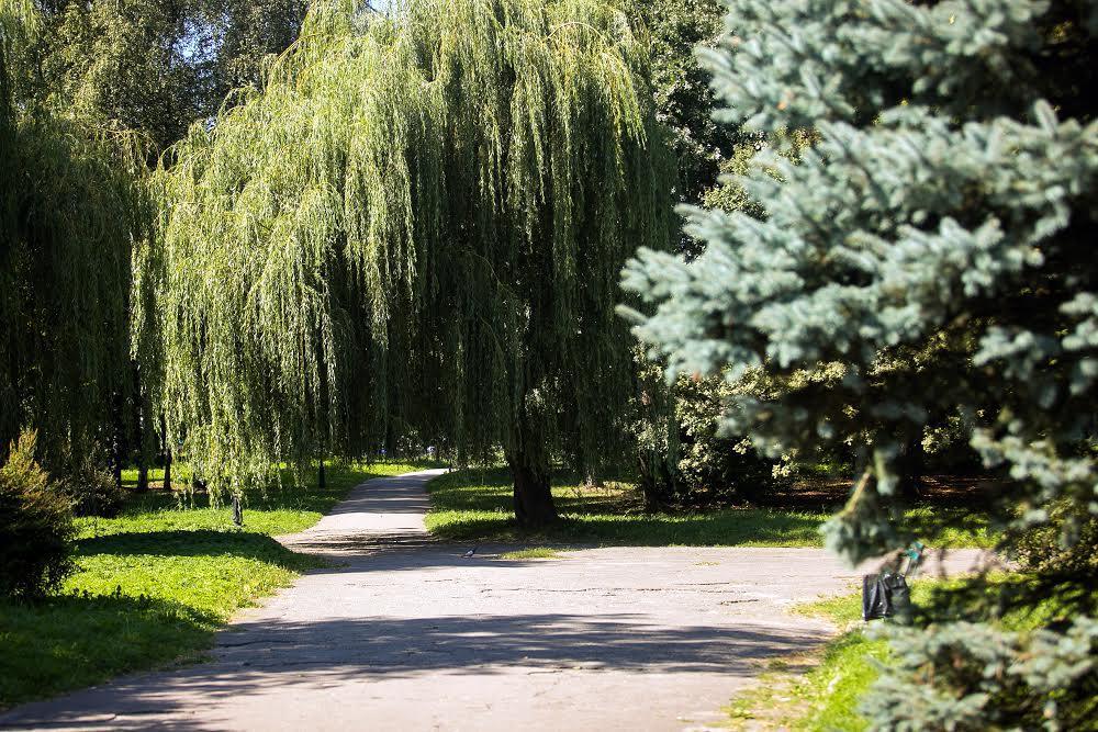 Парк Боднаровка
