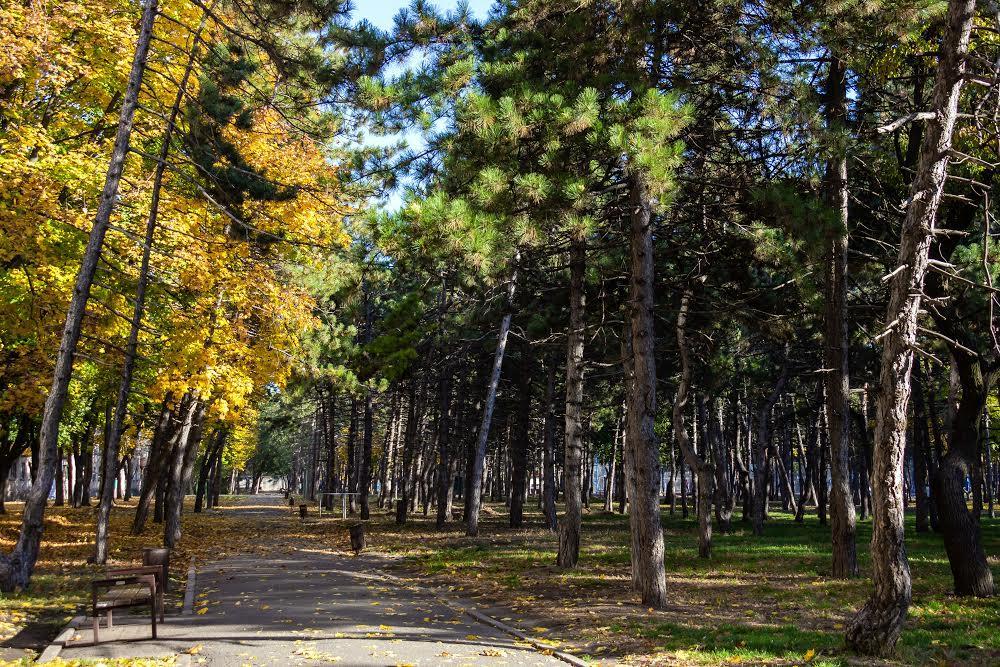 Парк Зеленый гай на Титова Днепр