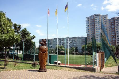 Стадион Вишневе