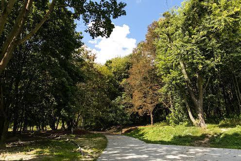 Замарстыновский лесопарк